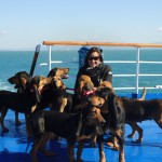 In viaggio per l'Isola d'Elba