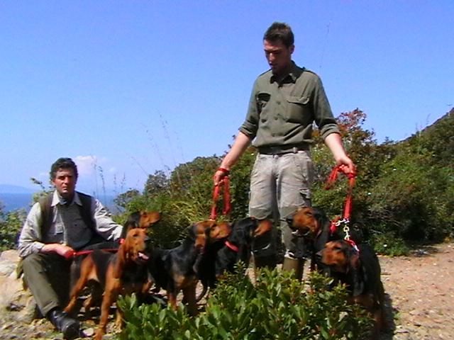 I segugi e l'allevatore a Punta Ala